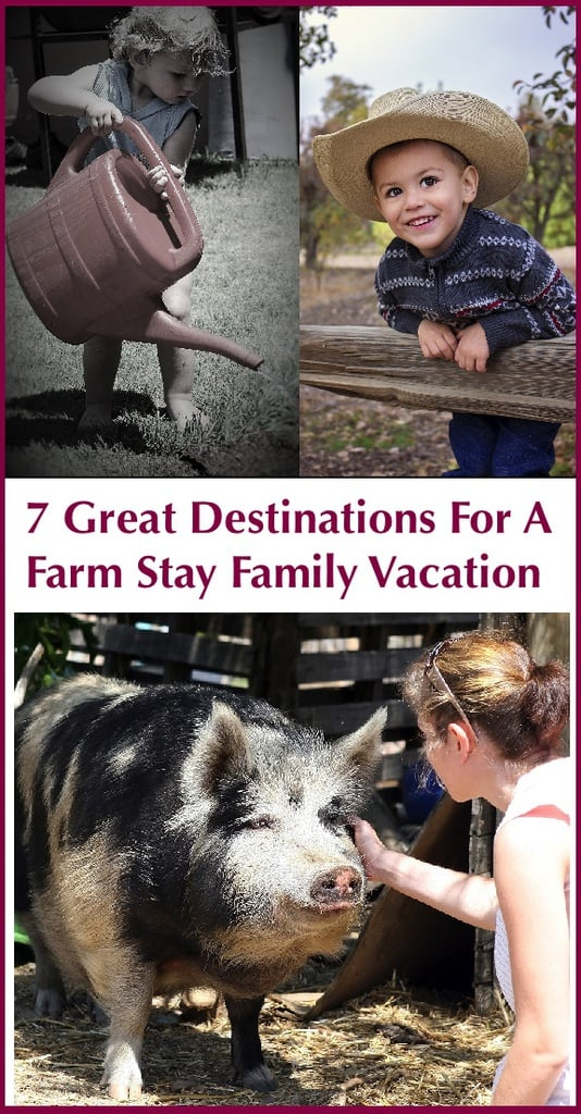 Farm stay vacations give families screen-free time and an opportunity to connect with animals, learn about food and enjoy some pretty scenery. Here are 7 farms across the u. S. That host guests. #farmstay #vacation #kids
