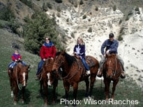 Horseback riding on wilson ranch