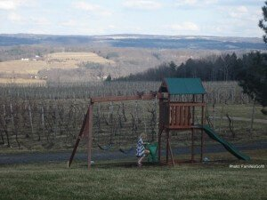 lakewood vineyard in the Finger Lakes