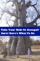 Senegal, on the west coast of africa has beautiful beaches, wild animals, interesting history, a pink lake and food and culture that is accessible to travelers. Here is what to see and do with kids.
