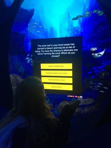 taking a quizz at the National Geographic Ocean Encounter
