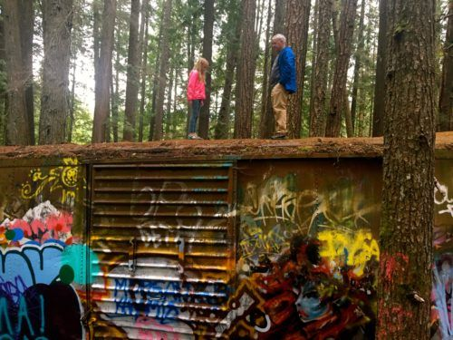 You can climb the graffitti box cars on b. C. 's train wreck trail, but be careful!