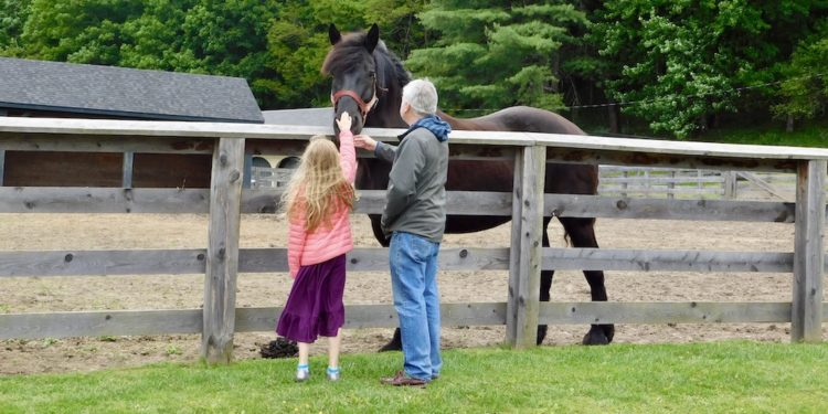 Our FamiliesGo! Father and daughter petting a horse at the Farmers' Museum in Cooperstown.