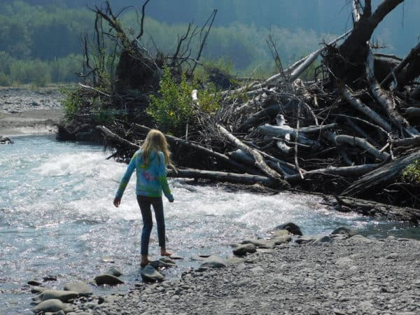 A girl wades in a shallow river toward a large beaver dam in the hoh rain forest area of olympic national park