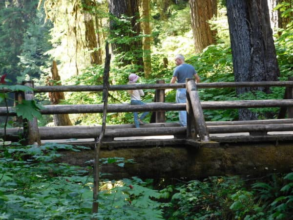 A dad and daughter admore the view from the wooden sol-duc bridge in woodsy olympic national park